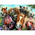 Puzzle de 500 piezas Selfie de Caballos animales graciosos divertidos