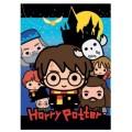 Manta polar de Harry potter con dibujos de todos los personajes suave